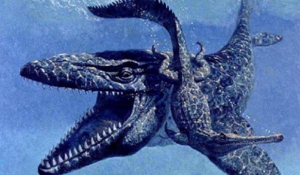 lioplewrodon