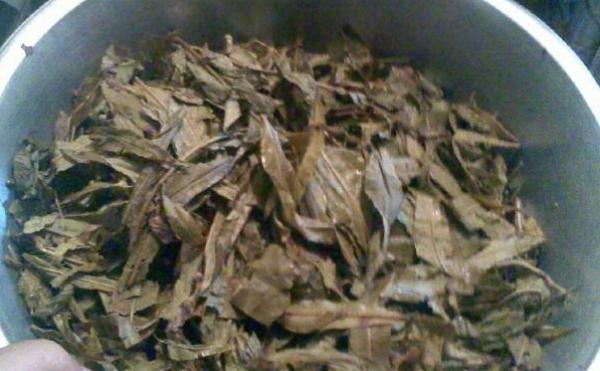 fermentazija-ivan-chaja