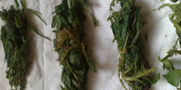 ivan-chai-skruchennie-kolbaski