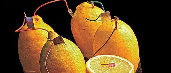 batareiki-iz-fructov