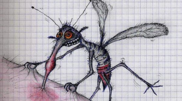 samka-komara