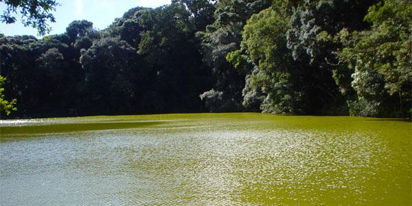 ozero-laguna-verde