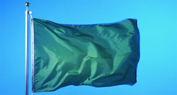 flag-livii