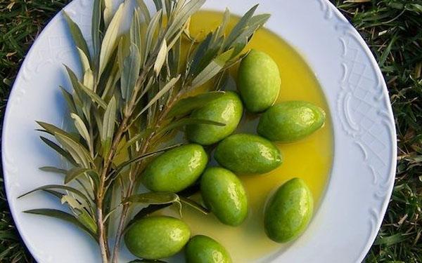 olyvki-olivkovoe-maslo