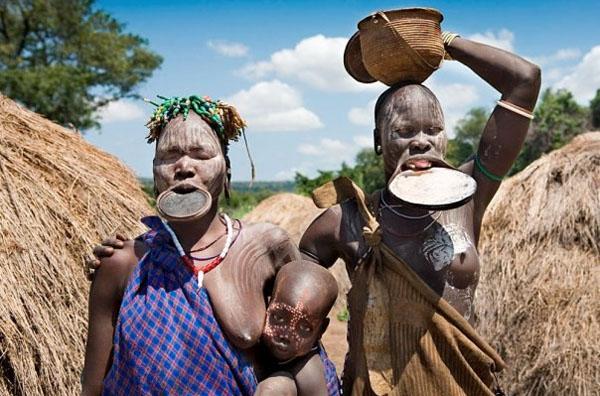 zenxzcini-afriki