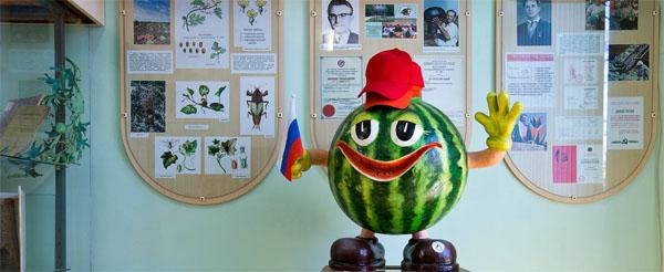muzei-rossiiskii-arbuz