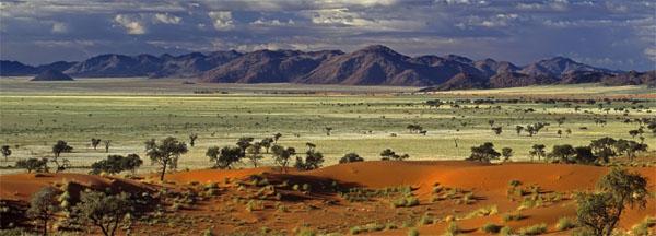 africa-savanna