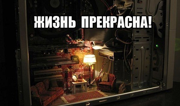 xchizn-v-compe